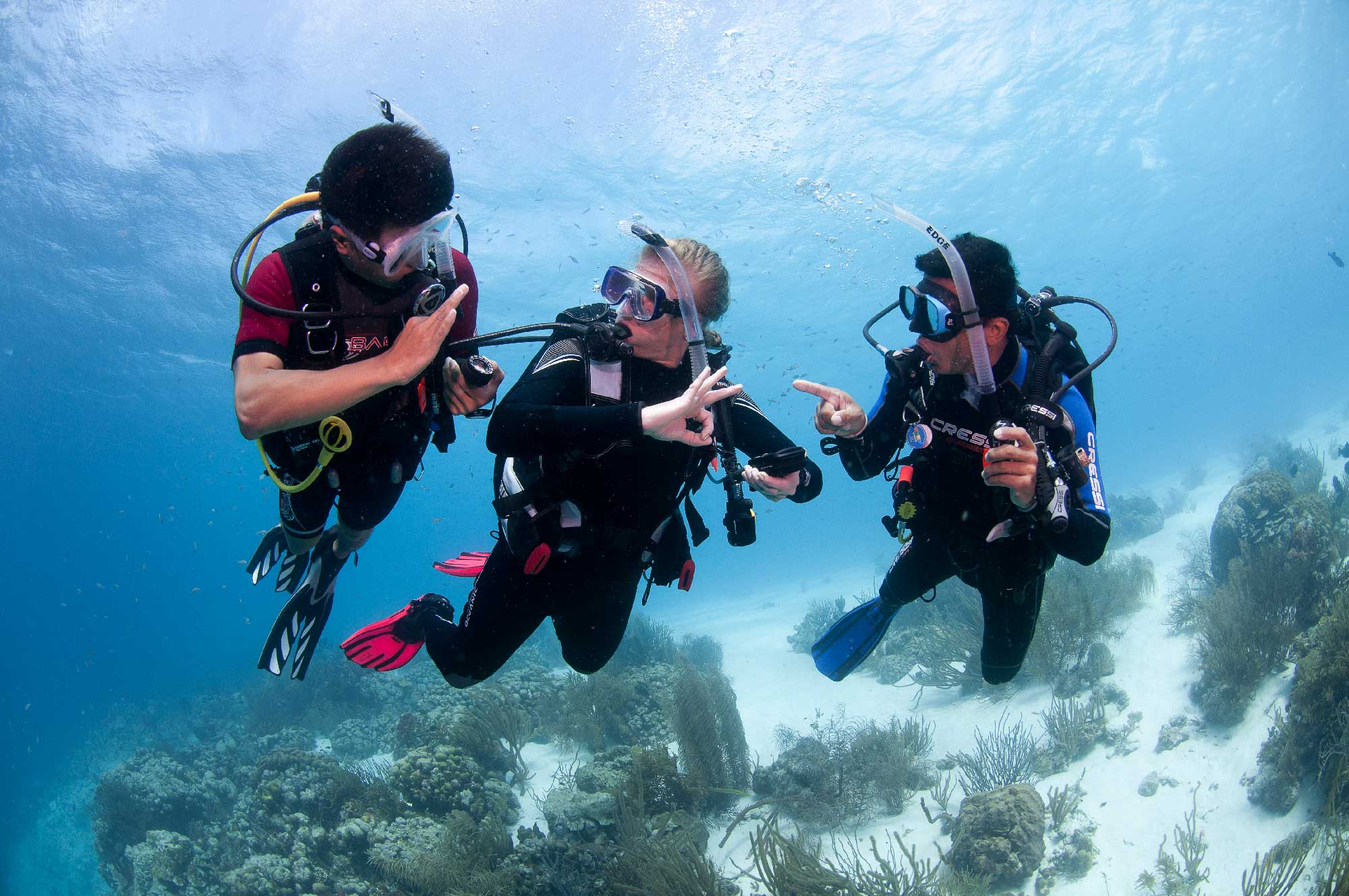 3 Scuba Divers underwater learning PADI open water course
